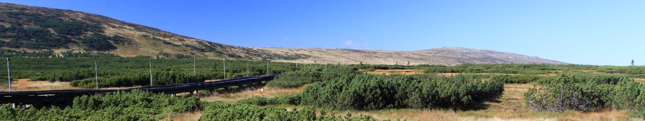 Janatův mlýn Buřany